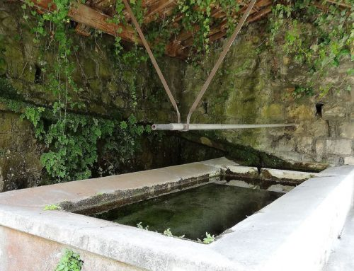 Sauvons le lavoir de Saint Jean la Rivière
